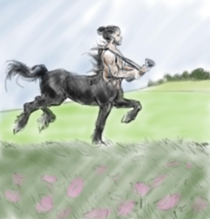 sketch 19 color
