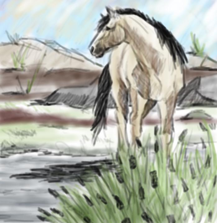 sketch 75