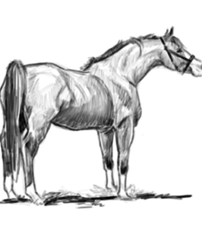 sketch 139