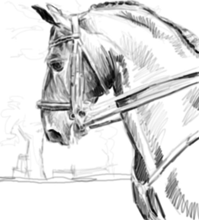 sketch 166